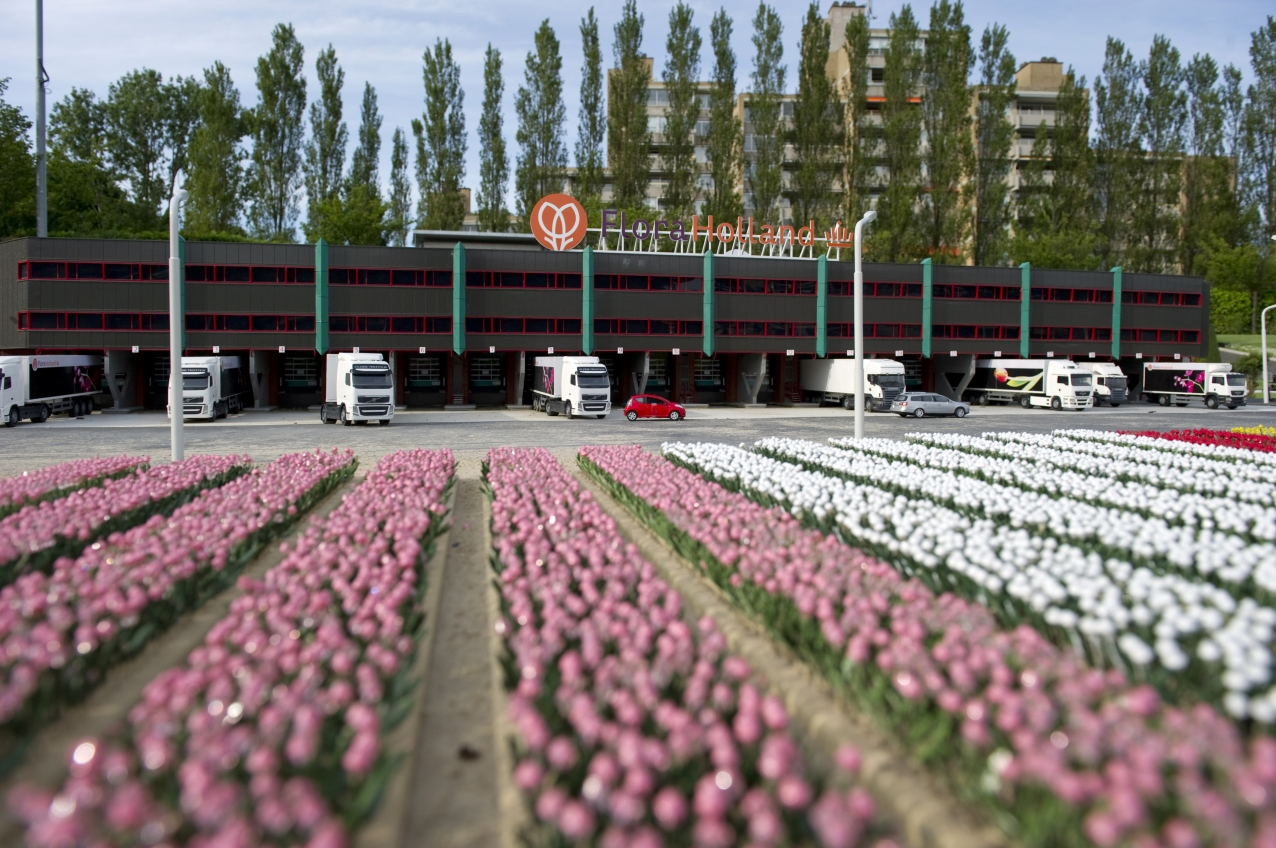 Royal FloraHolland in Madurodam